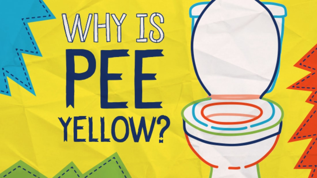 why pee yellow is