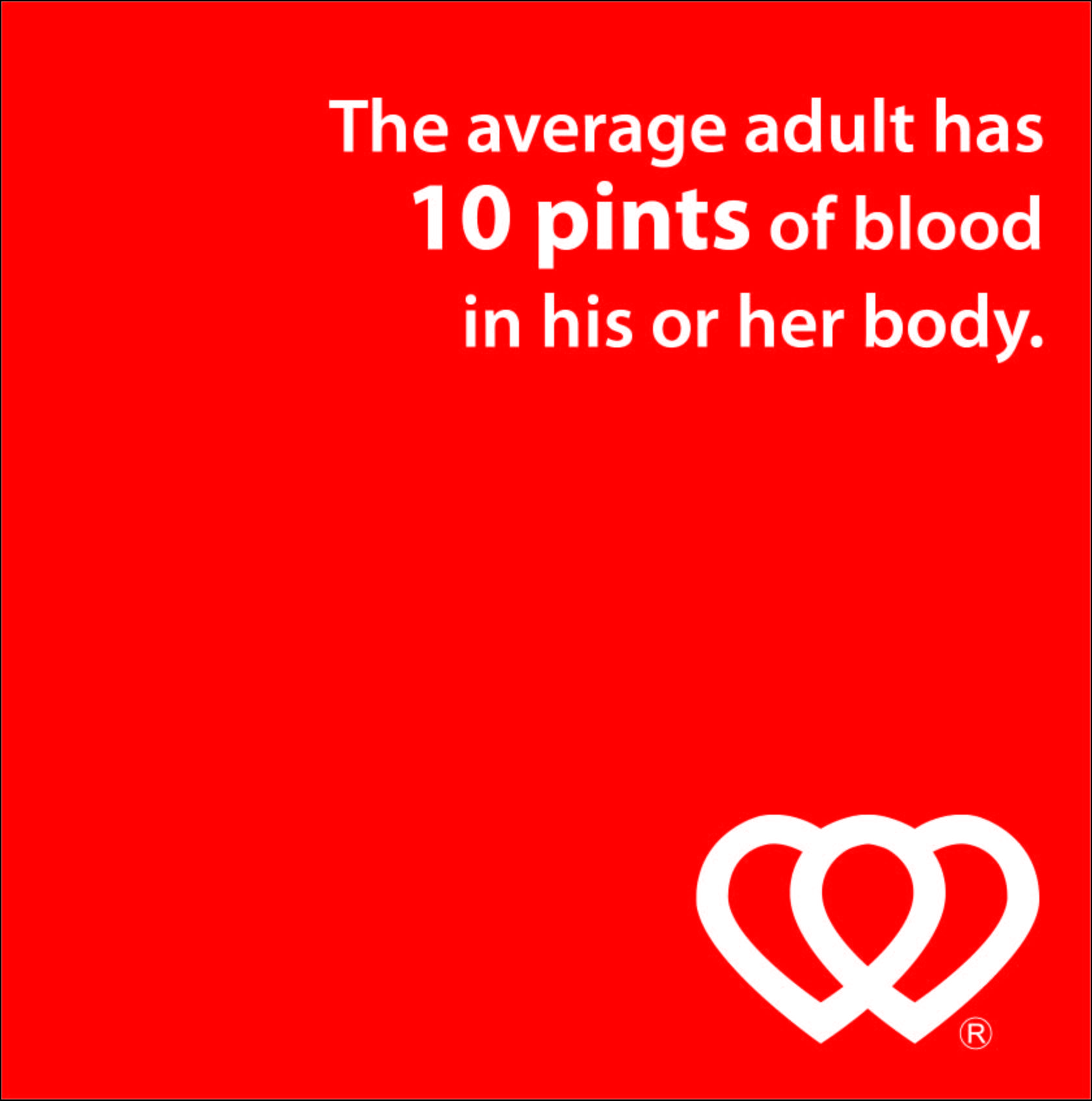 blood amount of in average adult