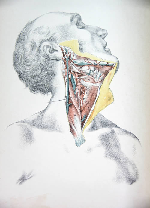 pain deep food throat when in swallowing